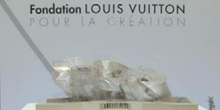 Paris : création de la Fondation Louis Vuitton
