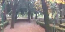 jardines del Crif Las Acacias con música
