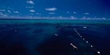 Arrecife de coral, Australia