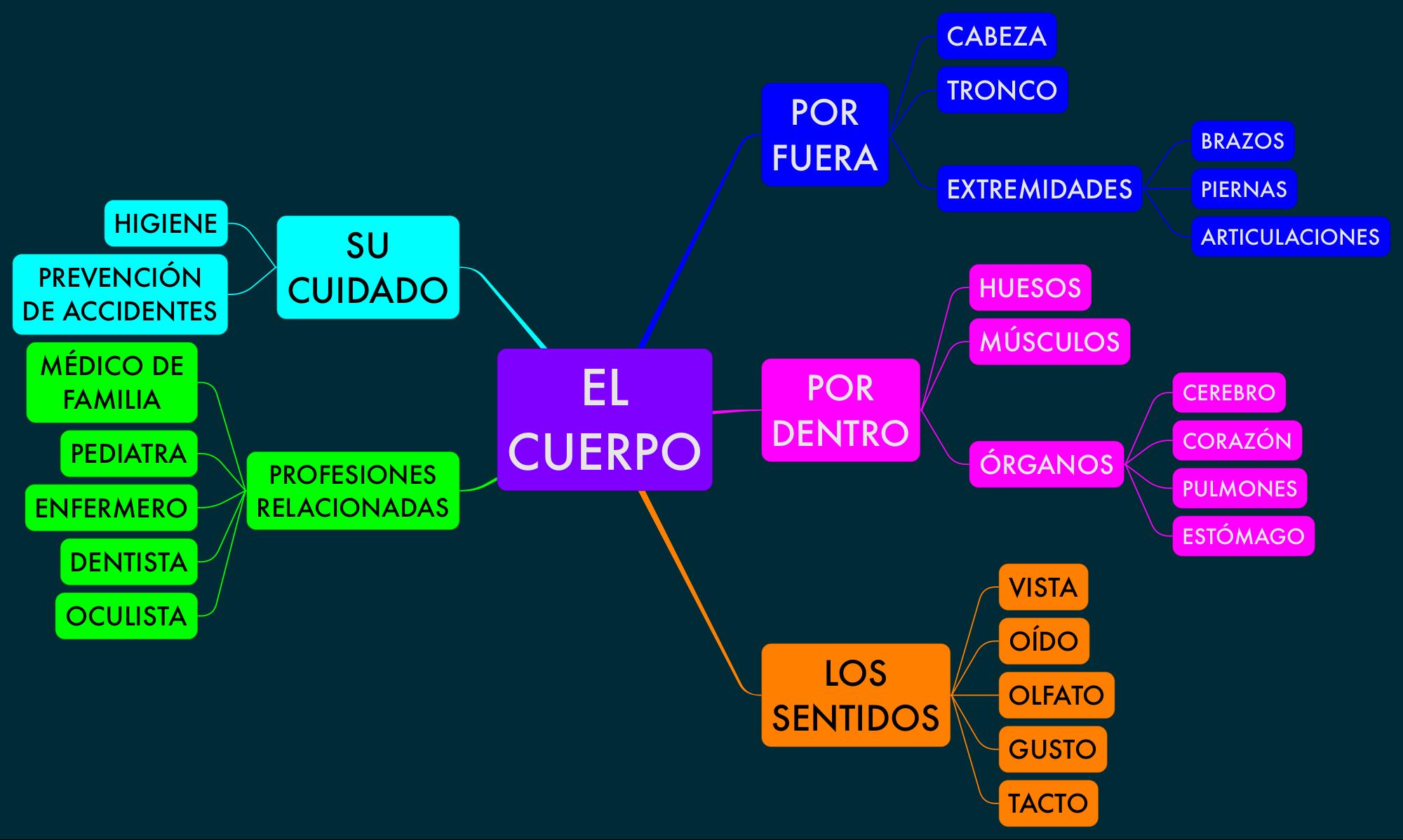 PROYECTO_EL_CUERPO_03