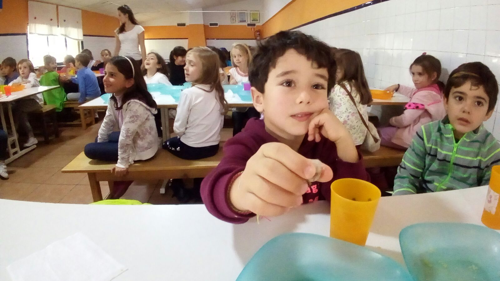 Granja Escuela 1º y 2º EP 2017-18 8