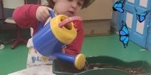 Infantil 3 años - Siembran y cuidan sus plantas