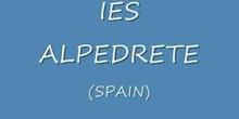 IES Alpedrete panorámica_convoz