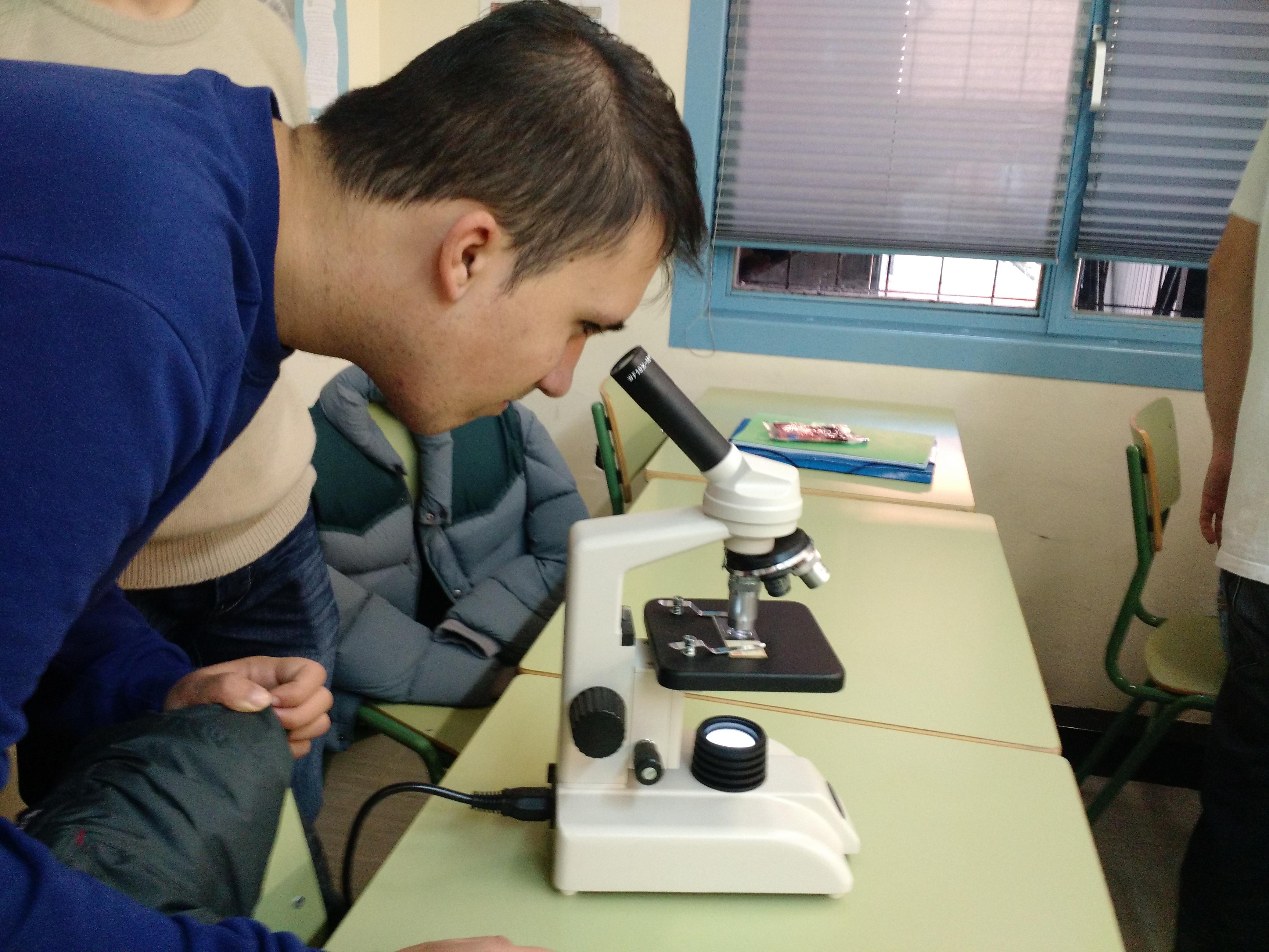 Usando el microscopio 4