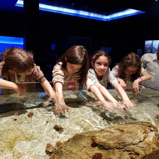 Fotos Aquarium Xanadú 3ºB 2