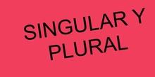 PRIMARIA 1º - SINGULAR Y PLURAL - LENGUA Y LITERATURA - FORMACIÓN