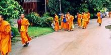 Monjes saliendo de clase, Tailandia