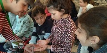 2018_03_16_Tercero visita el Insect Park_CEIP FDLR_Las Rozas 3