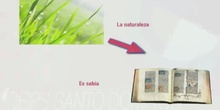 3ºS FIGURAS LITERARIAS. COMPARACIÓN, PERSONIFICACIÓN Y METÁFORA. DIEGO GONZÁLEZ