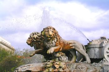 Leones en la Fuente de Cibeles, Madrid