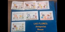 Amapolas, rosas, girasoles