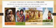 """Proyecto  """"Los Indios"""""""