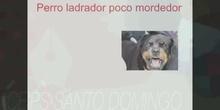 2ESO - Refranes y frases hechas - Santiago de Álvaro