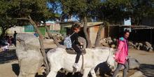SALIDA A GRANJA ESCUELA EL PALOMAR (Chapinería ) 5