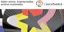 Editor online: Insertar / Editar: Archivo multimedia