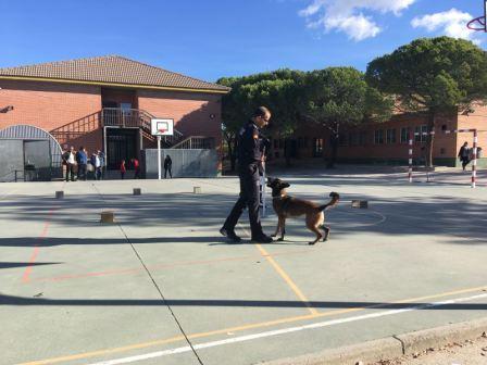 La Unidad Canina de la Policia Municipal de Las Rozas visita el cole_CEIP FDLR_Las Rozas_2017  8