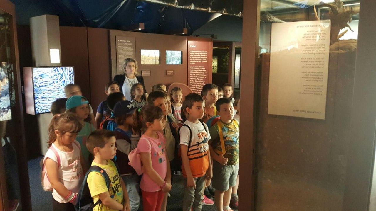 Visita a la exposición El Bosque. 1º 2º Primaria. CEIP Pinocho. 2016/17 22