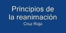 Principios de la reanimación