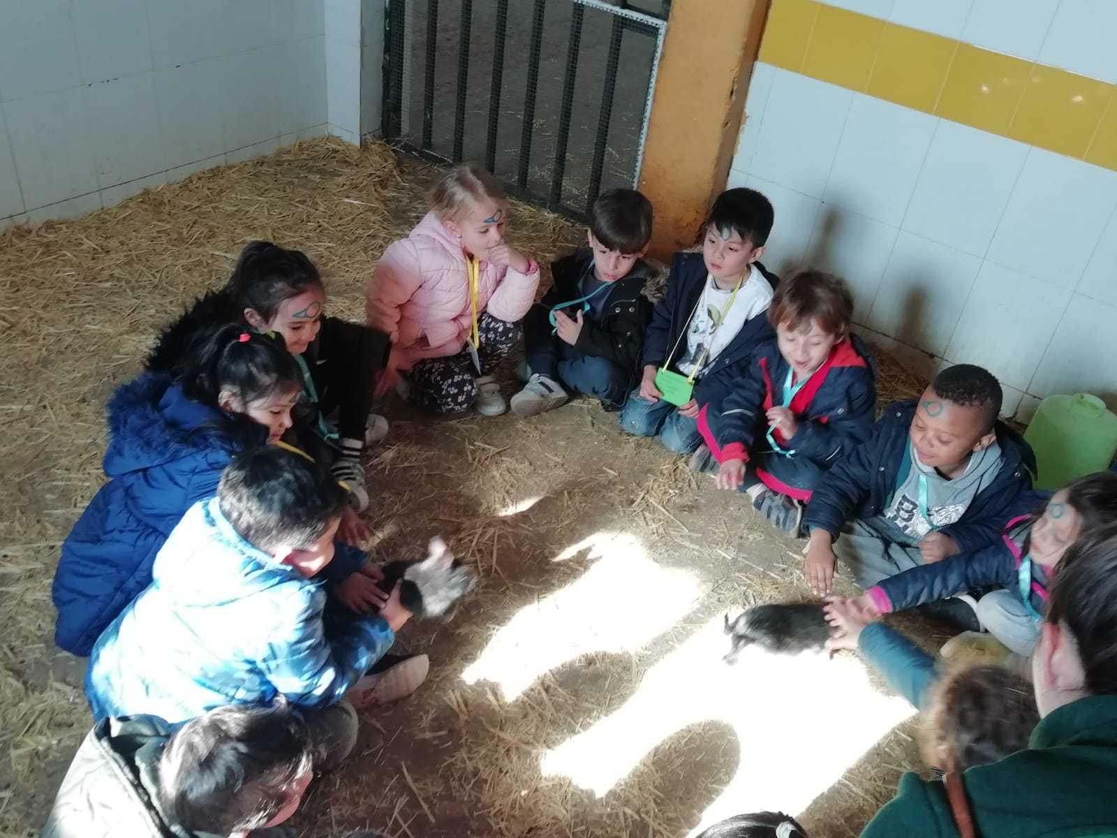 """Granja Escuela """"El Álamo"""". Infantil 4-5 años 3"""
