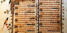 Libro ilustrado medieval