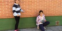 Quinto mide el Colegio