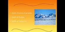 PRIMARIA - 5º - TUNDRA - NATURAL SCIENCE - CLAUDIA, INÉS, LEO e ISMAEL