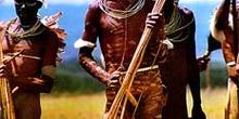 Hombres armados. Colección de flechas, Irian Jaya, Indonesia