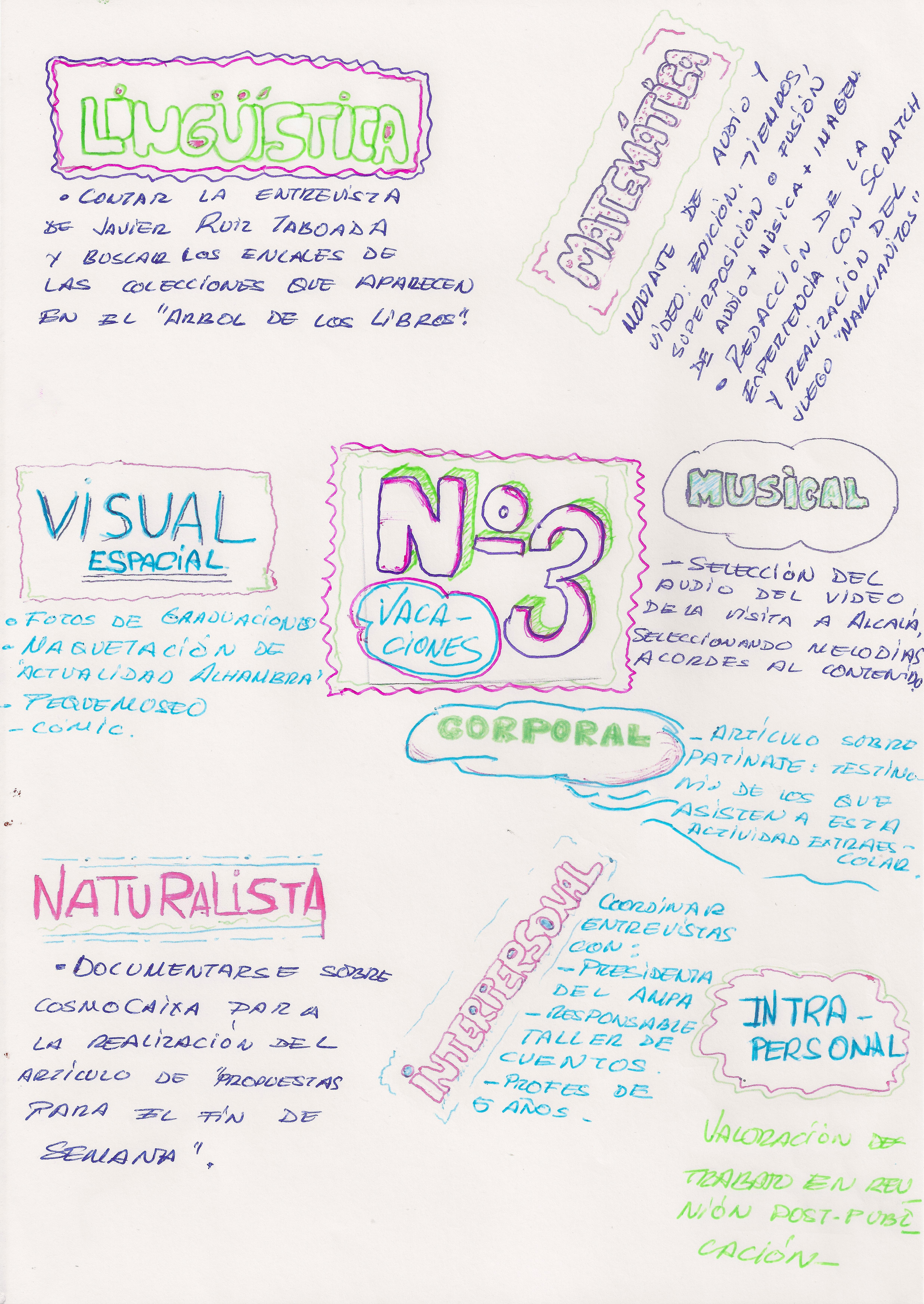 Paletas de inteligencias múltiples para la revista VozdelCole