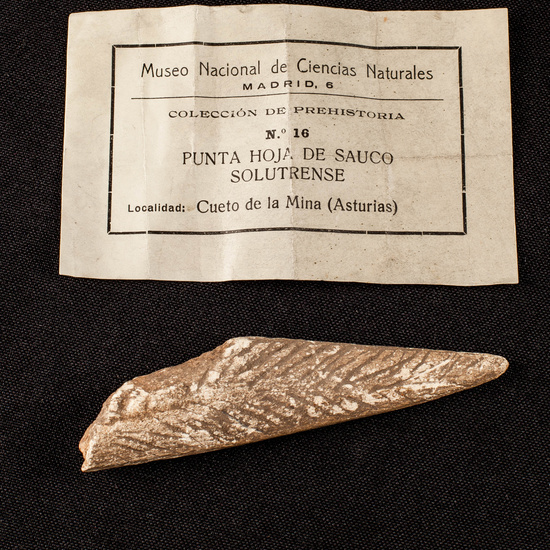 IES_SANISIDRO_MUSEO_Paleologia_030