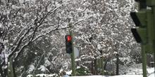 Calles nevadas, Comunidad de Madrid
