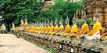 Fila de Budas, Tailandia