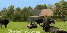 Organic farming. Good for nature, good for you!