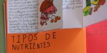 [Lapbook] - Mi atlas del cuerpo humano (3º de primaria) - IMAGEN 9