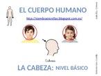 CPEE.SEVERO OCHOA. AUDICIÓN Y LENGUAJE. Vocabulario del cuerpo: la cabeza. nivel básico