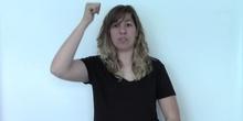 MAESTRO DE PEDAGOGÍA TERAPÉUTICA (Signos EducaSAAC)