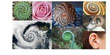 Matemáticas y Arte. La espiral de Durero y Las Meninas