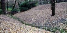 Lecho de hojas, Parque del Capricho, Madrid