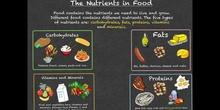 PRIMARIA - 3º - FOOD GROUPS - NATURAL SCIENCE - FORMACION