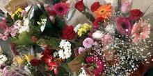 Flores a María - Educación Infantil 13