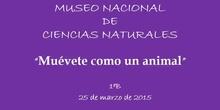 Museo Nacional de Ciencias Naturales 1ºB
