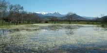 Laguna primaveral