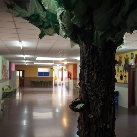 Instalaciones CEIP El Jarama 27