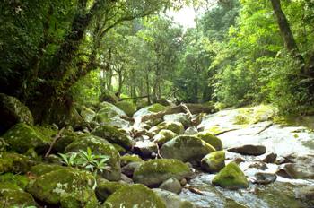 Arroyo afluente del río Molocue, Gurue, Mozambique
