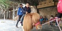 Excursión a la granja (Infantil) 10