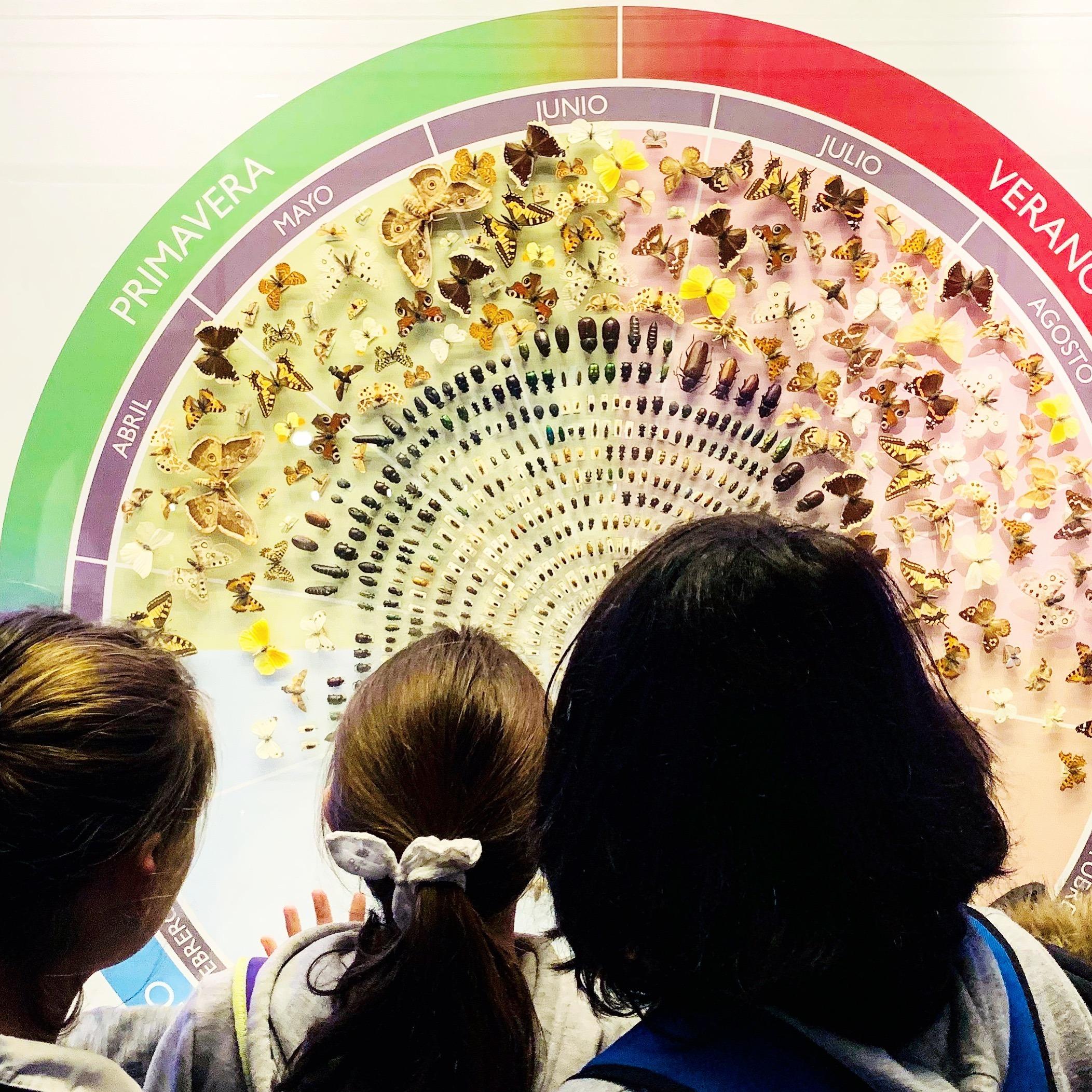 Excursión al Museo Nacional de Ciencias Naturales 7