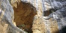 Detalle de cueva en roca