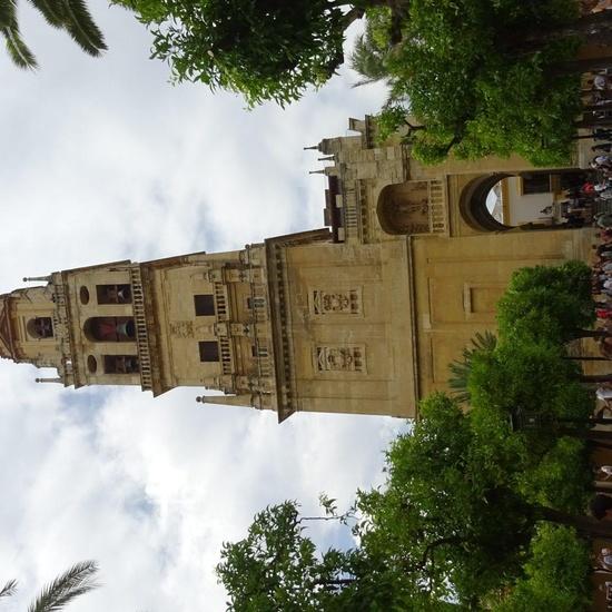 Córdoba 2019 (9)