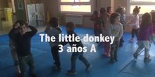 Little Monkey 3 años A