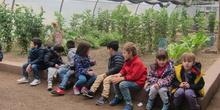 Granja Escuela Educación Infantil Curso 2017-18_2 27