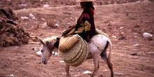 Mujer dirigiéndose en burro al mercado de Suq al Khamis, Yemen